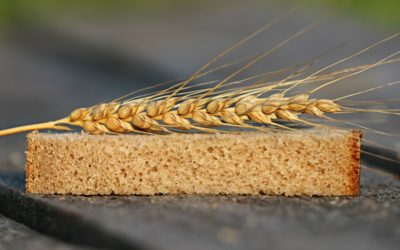 Gluten, interview de Margaux Mouillon diététicienne nutritionniste